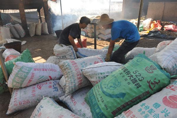 11月23日,琼海市万泉镇的群众在出售槟榔果。