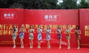 湖南唐伟龙实业集团